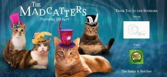 The MadCatters Pawty