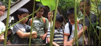 Nature Rambling at the Children's Garden (A Biodiversity Investigative Workshop)