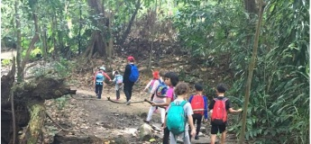 Forest School Summer Holiday Camps
