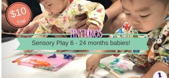 Sensory PlayGroup for Babies