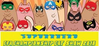 Supurrhero CFA Cat Show