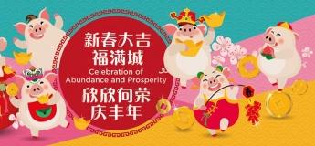 Chinatown Chinese New Year Celebrations 2019