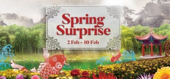 Spring Surprise@Gardens By The Bay