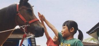 CNY Basic Riding Workshop