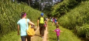 FS Workshop: Family Walk@Dairy Farm Nature Park