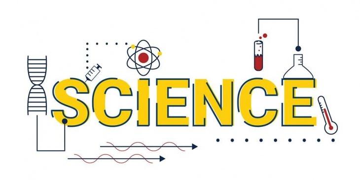 science template elita aisushi co