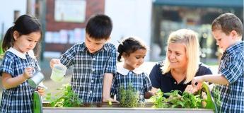 Introduction to Tanglin Nursery