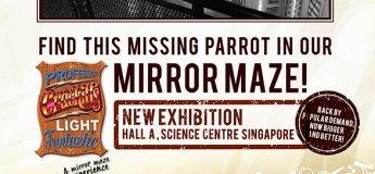 Professor Crackitts Light Fantastic Mirror Maze