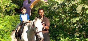 Pony Ride @ Singapore Zoo
