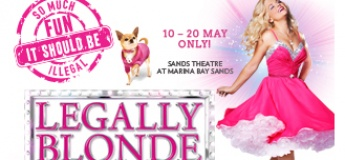 Legally Blonde. The Musical