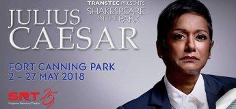 Shakespeare in the Park - Julius Caesar