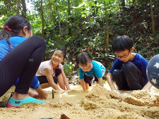 Forest School Holiday Camp