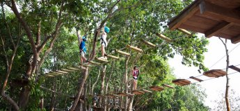 Bedok Reservoir Park. Forest Adventure Tree Top Course